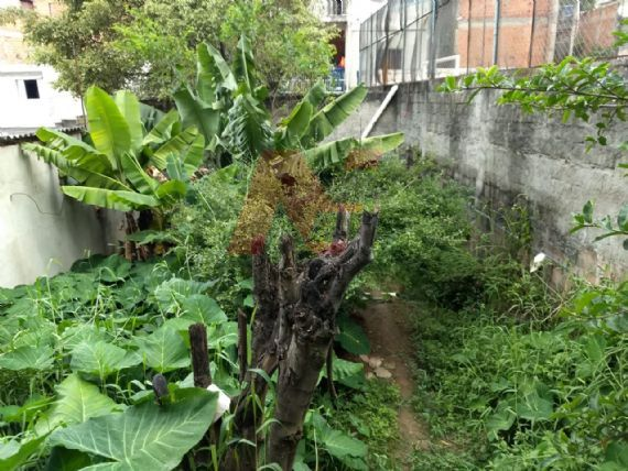 Terreno à venda, Jardim Roberto, Osasco