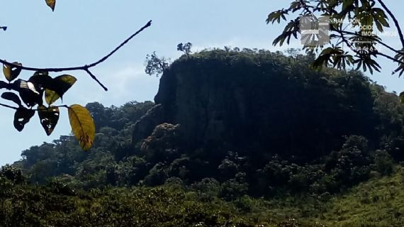 Rural à venda, Bairro do Pinga, Pindamonhangaba