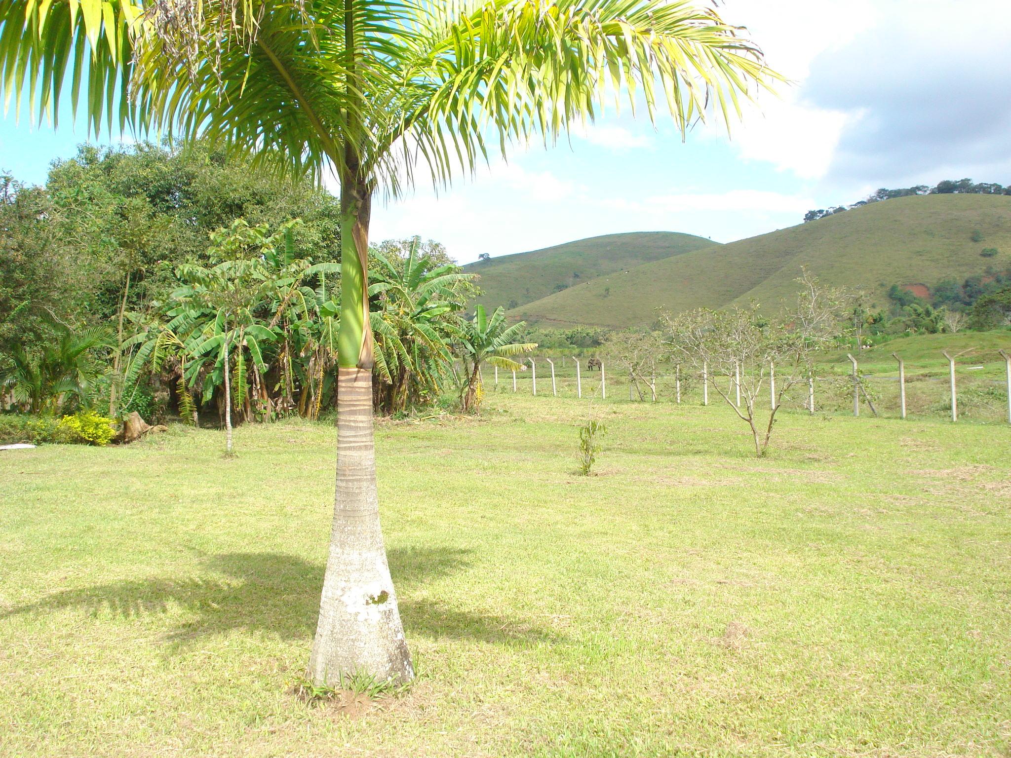 Rural à venda, Ribeirão Grande, Pindamonhangaba