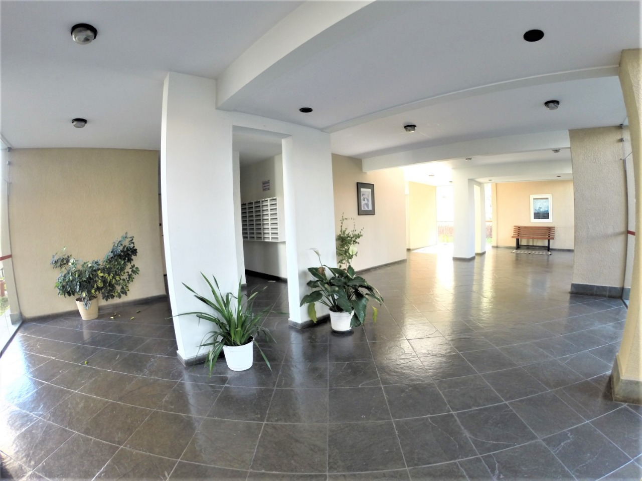 Sacomã, Apartamento Padrão-Hall de entrada.