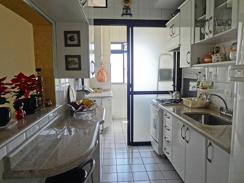 Sacomã, Apartamento Padrão-Cozinha com piso de cerâmica, armários planejados, passa pratos, pia e bancada de granito.