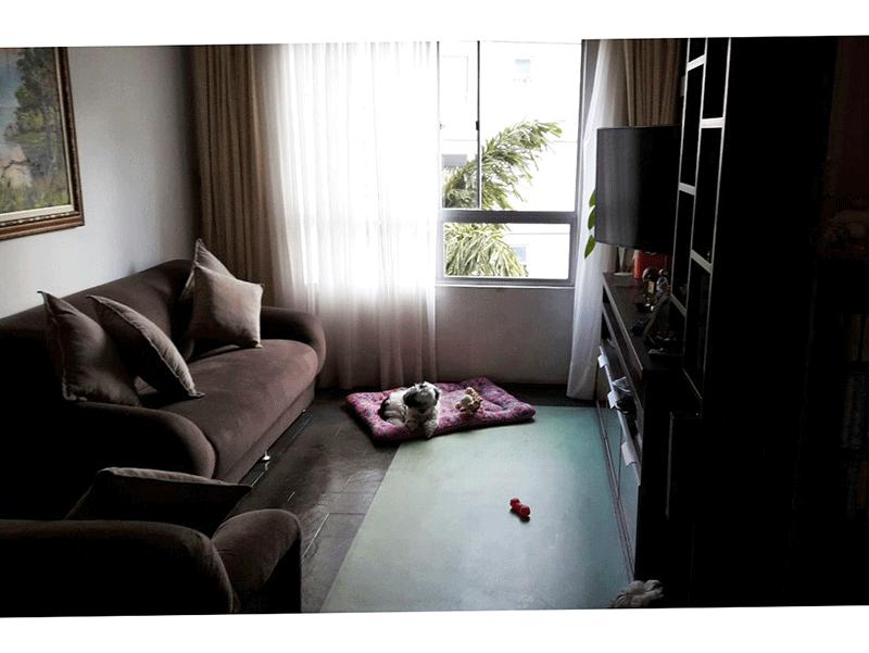Sacomã, Apartamento Padrão-Sala retangular com piso de ardósia.